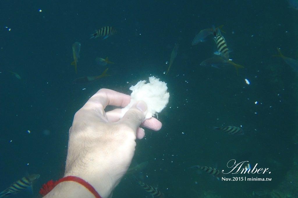 科隆島,菲律賓,浮潛,深潛,珊瑚花園,盧松砲艦沈船,帕斯島,東沈船,跳島,mini-tour,033