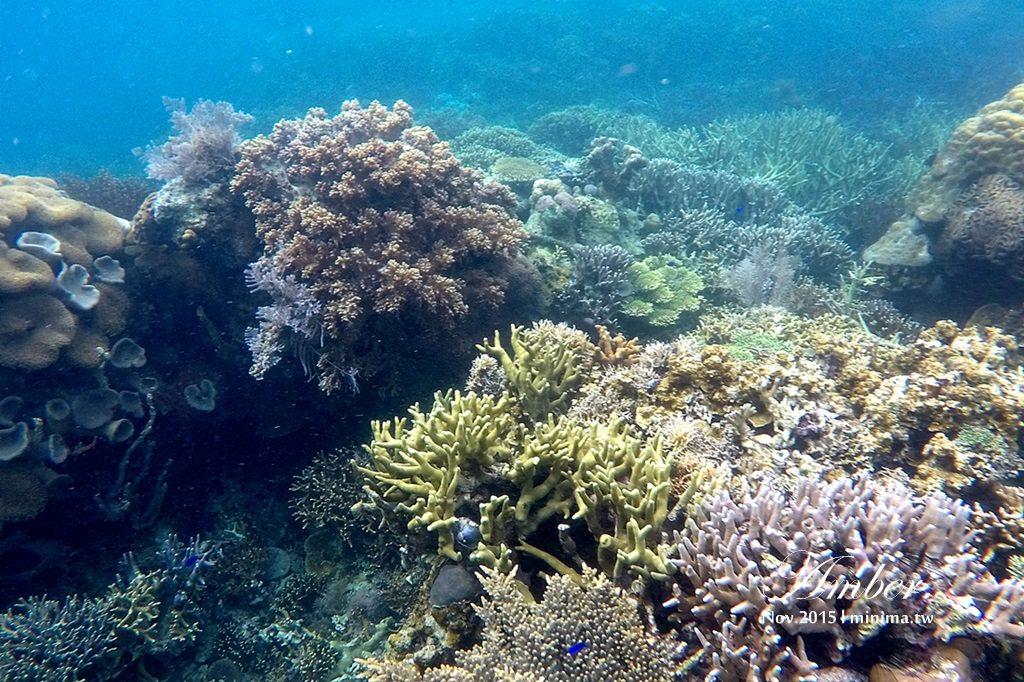 科隆島,菲律賓,浮潛,深潛,珊瑚花園,盧松砲艦沈船,帕斯島,東沈船,跳島,mini-tour,005