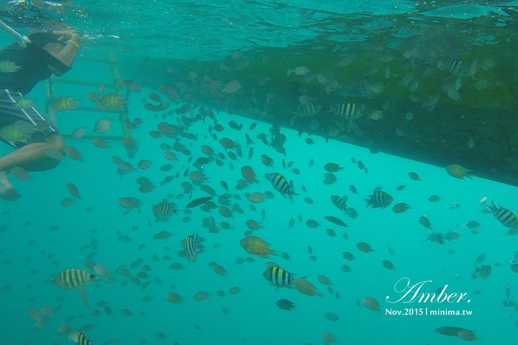 科隆島,菲律賓,浮潛,深潛,珊瑚花園,盧松砲艦沈船,帕斯島,東沈船,跳島,mini-tour,007