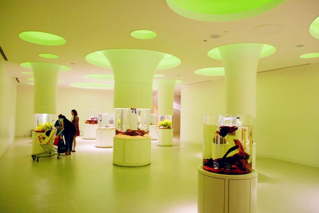 LaLaport購物中心,神奇寶貝互動館,大阪必去景點,萬博紀念公園,NIFREL,海遊館,水族館,生態館,p9820752
