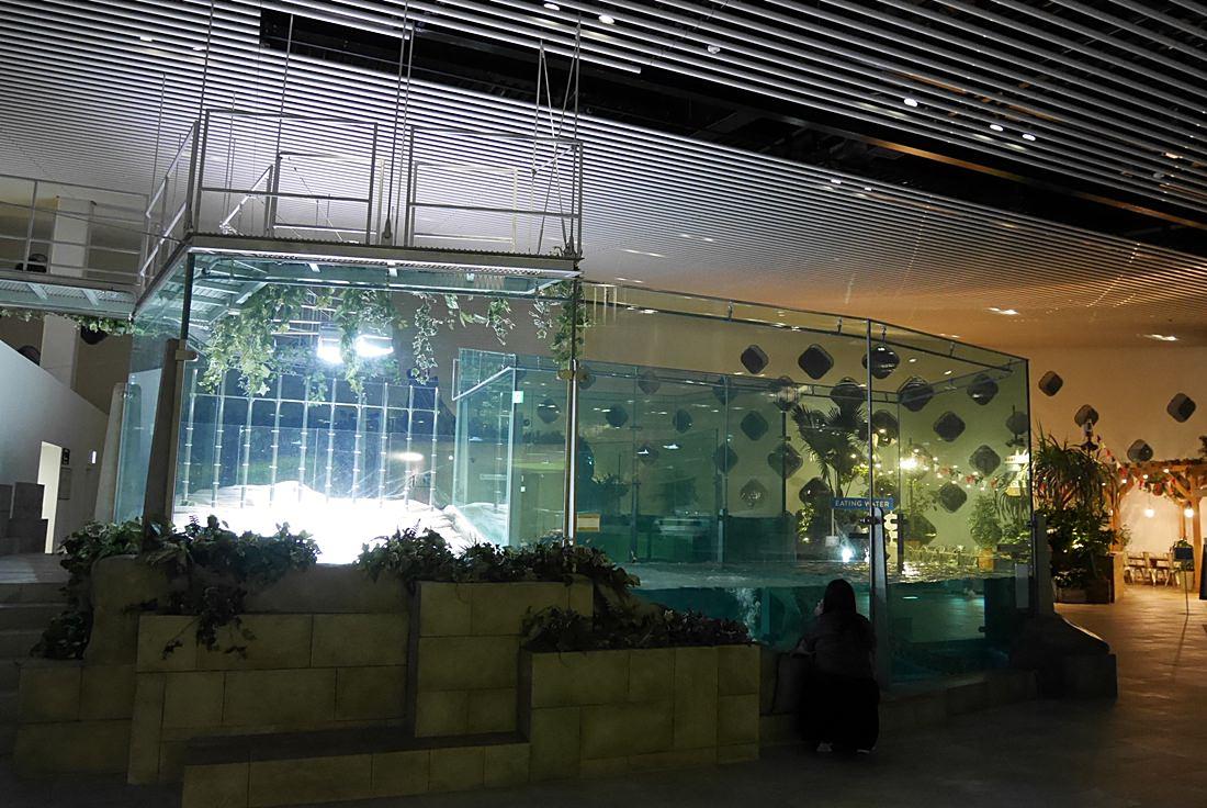 LaLaport購物中心,神奇寶貝互動館,大阪必去景點,萬博紀念公園,NIFREL,海遊館,水族館,生態館,p9820763
