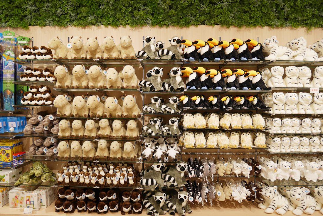 LaLaport購物中心,神奇寶貝互動館,大阪必去景點,萬博紀念公園,NIFREL,海遊館,水族館,生態館,p9820857